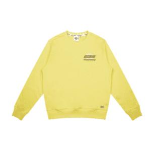 ao-sweatshirt-dickies-french-terry-brand-logo-print-dk008723b71