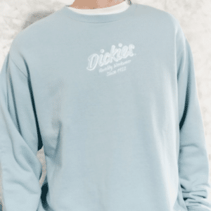 ao-sweatshirt-dickies-french-terry-embroidery-graphic-logo-dk008717b70